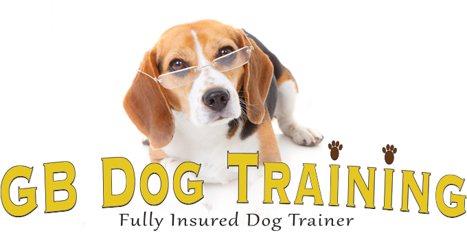 Dog Trainers | GB Dog Training